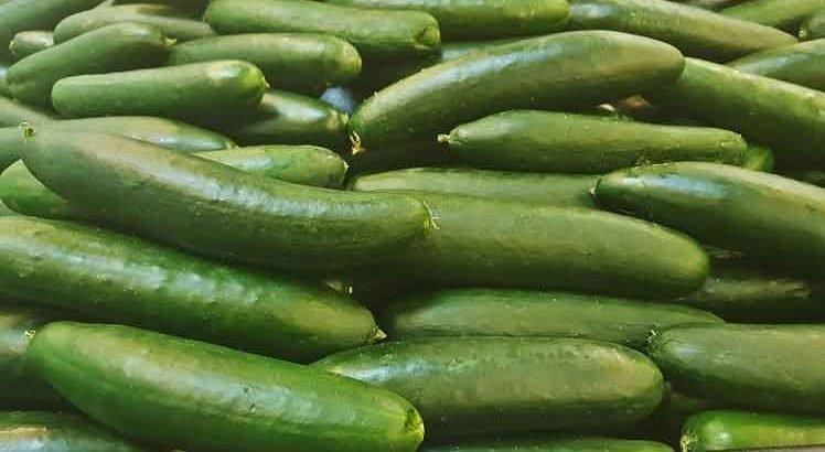 franse komkommersalade